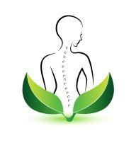 21655547 - human spine icon illustration vector